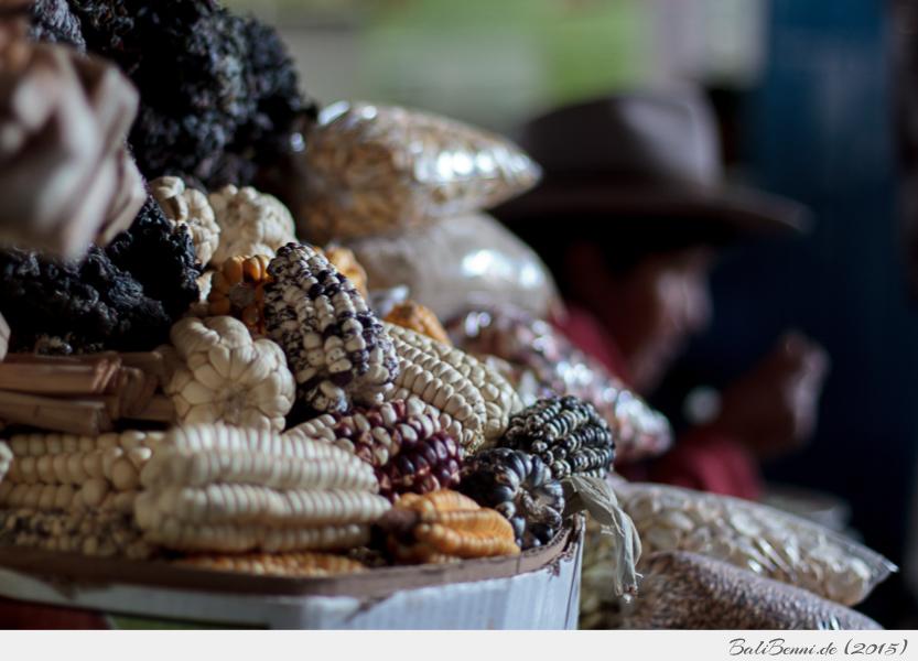 Ein Händler mit allen peruanische Maissorten auf dem Markt von Cusco, Peru